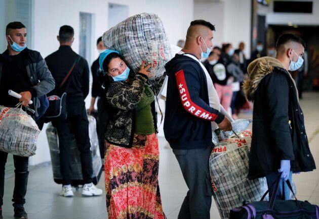 Rumäner som rekryterats för att arbeta i det brittiska lantbruket köar på flygplatsen i Bukarest den 8 maj.