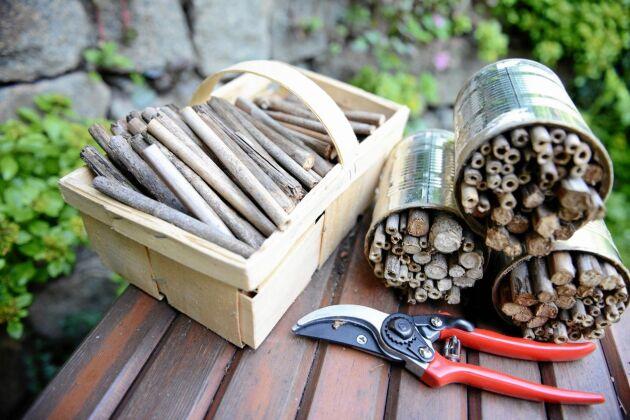 Bygg ett enkelt bihotell. Har du inte bambu kan du ta grenar från fläder och hallon.