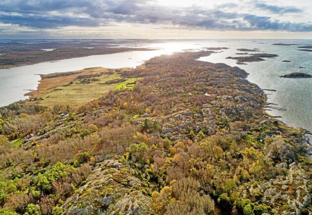 Först var Kråkerön på väg att bli naturreservat trots att det bara konstaterades ett par skyddsvärda arter på ön. Nu är den i stället belagd med 300 meters strandskydd från båda håll vilket gör att det bara finns en remsa på bredaste stället som inte är belagd med restriktioner.