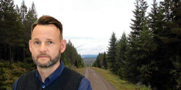 Skogsmarknaden stekhet för bolag
