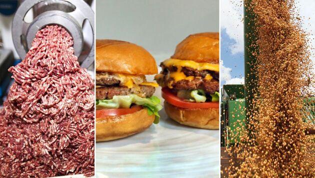 Aptiten på köttfria burgare ökar. På bilden syns en hamburgare gjord på kött och en på köttsubstitut från amerikanska Impossible Foods. Till vänster köttfärs och till höger soja.