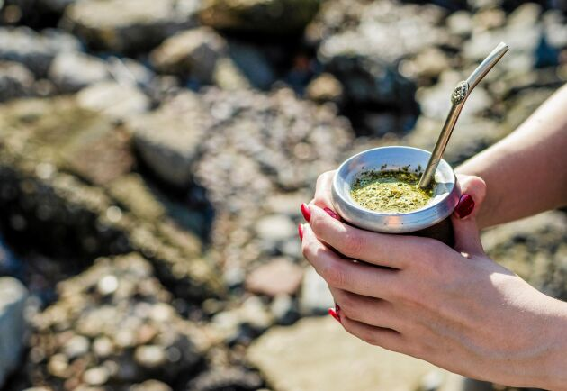 Yerba mate dricks traditionellt med sugrör ur en så kallad kalebass som fylls med mateblad och en liten mängd vatten.