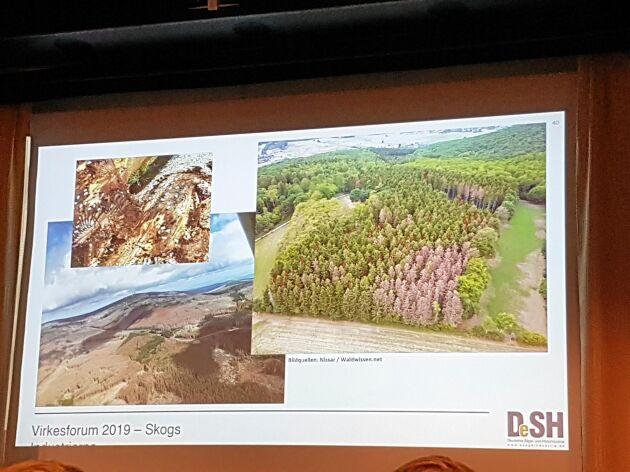 Stora skogsarealer står bruna efter granbarkborrens angrepp i Centraleuropa. Under Virkesforum visade forskare och representanter från industrin bilder på hur insektens härjningar har dragit fram i landskapet.