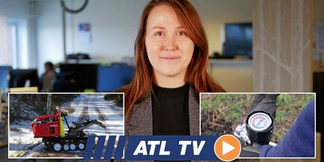ATL TV: Pionjärer med mellangrödor