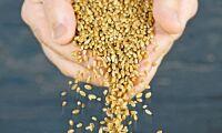 Ja till Bayers köp av Monsanto
