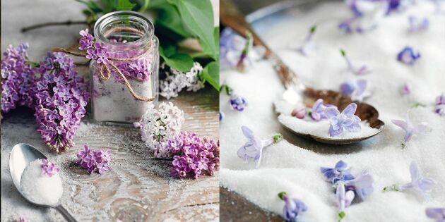 Så enkelt gör du somrigt syrensocker – med ljuvlig vanilj