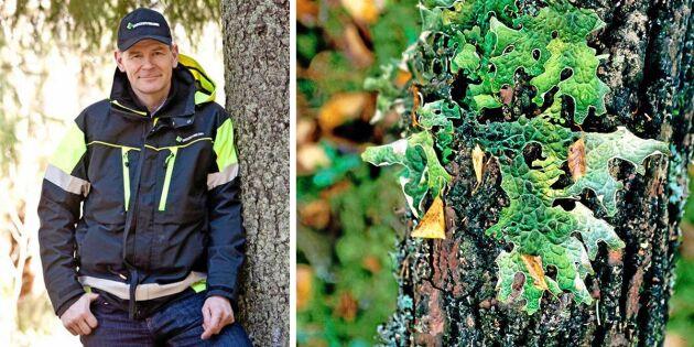"""Herman Sundqvist: """"Hur ska vi kunna komma framåt?"""""""