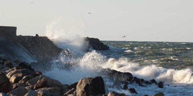 Stormvarning! 10 viktigaste råden – så klarar du ovädret bäst
