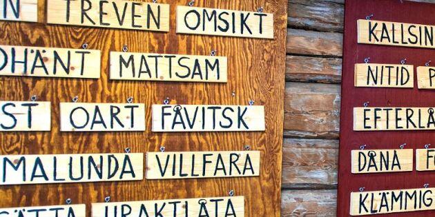 21 ord som snart bara finns på museum – hur många kan du?