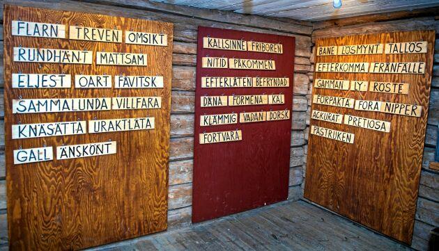 Titta in på ordmuseet som har väggarna fulla med gamla ord.