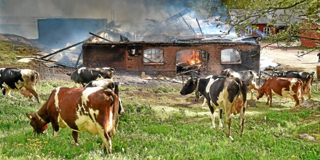 Branden förändrade livet på gården