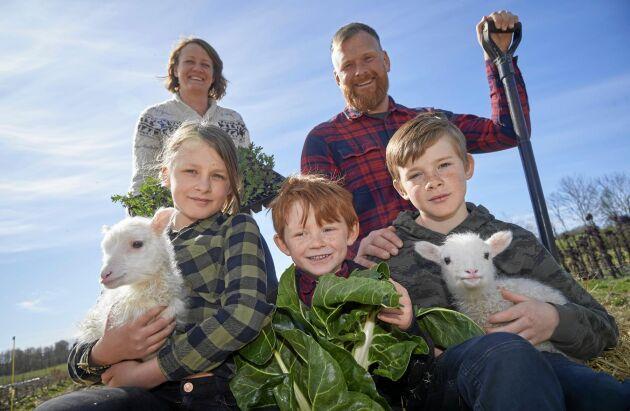 Johan Widing med hustrun Linnea och barnen Stella, 9 år, Carl, 5 år, och Lukas, 11 år och två nyfödda Klövsjölamm.
