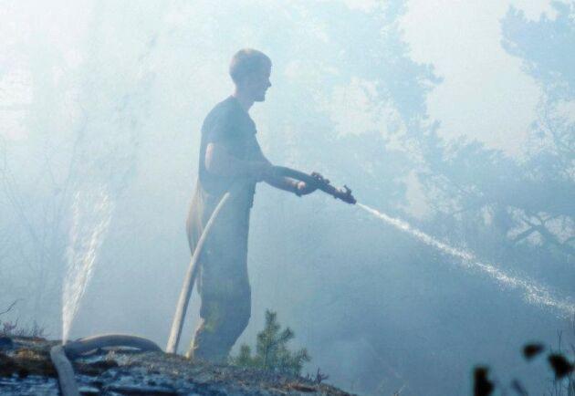 Många markägare är intresserade av att bilda reservat efter sommarens skogsbränder.