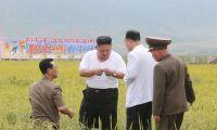 Nordkoreanska lantbruk förses med beväpnade vakter