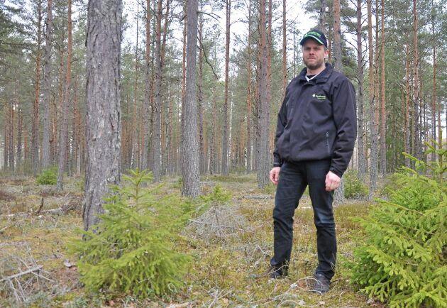Tobias Nilsson vill locka fler unga att bli skogsägare.