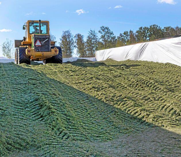 Förutom traktor, bogserad hack och vagnar så är maskiner och redskap i vallkedjan inhyrd från lokala entreprenörer som gården haft ett långvarigt samarbete med.
