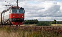 Kor påkörda av tåg i Bohuslän