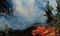 Risk för skogsbrand i större delen av landet