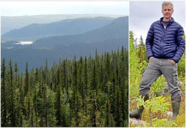 Anders Pettersson är näringspolitisk talesperson på Västerbottens Allmänningsförbund som varit målsägare i flera av de uppmärksammade fallen med nekade avverkningstillstånd i fjällnära skog.