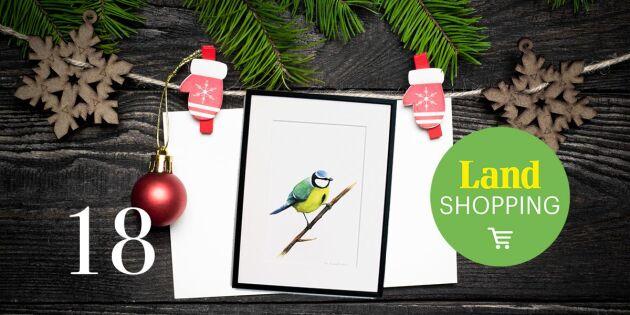 Julkalendern 2017: 25 procents rabatt på Lisas populära fåglar
