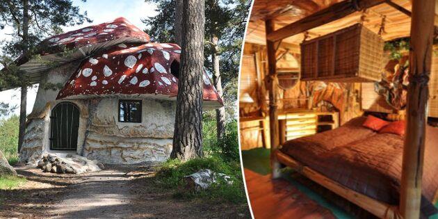 Spana in magiska semesterlyan – här kan du bo i en svamp!