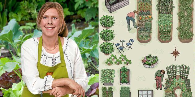Planera din grönsaksodling från grunden – följ trädgårdsexpertens råd