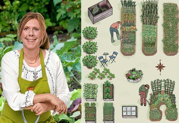 Dags att börja planera för årets odling. Lands Bella Linde hjälper dig.