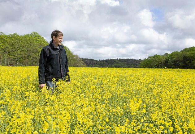 Klevs gård är en av få gårdar som producerar kallpressad rapsolja av en specifik sort.
