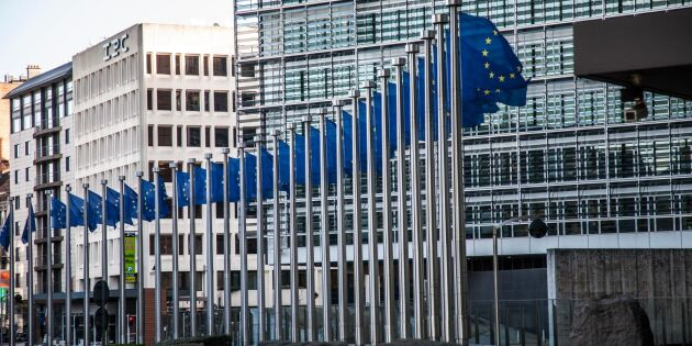 EU-kommissionen föreslår stödpaket till lantbruket