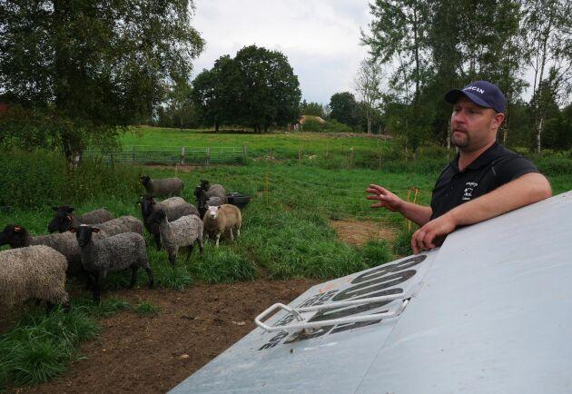 En viktig del i att säkerställa tillväxten på lammen är en foderautomat så att djuren alltid har fri tillgång på foder.