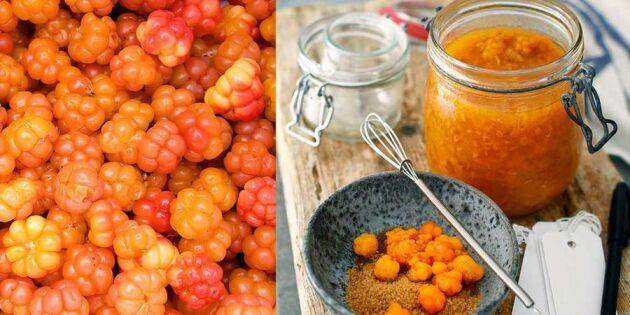 Hemlagad hjortronsylt – här är bästa receptet