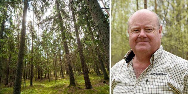 Ny lag skapar turbulens i litauisk skog