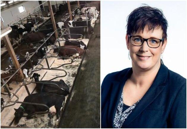 Cecilia Lindahl, produktutvecklare på Lantmännen Lantbruk.