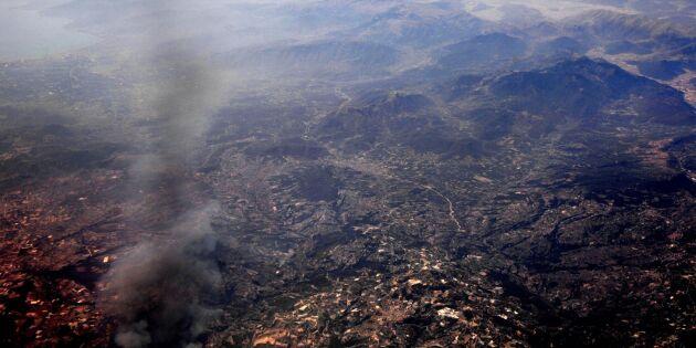 Många dödsfall i grekiska skogsbränder