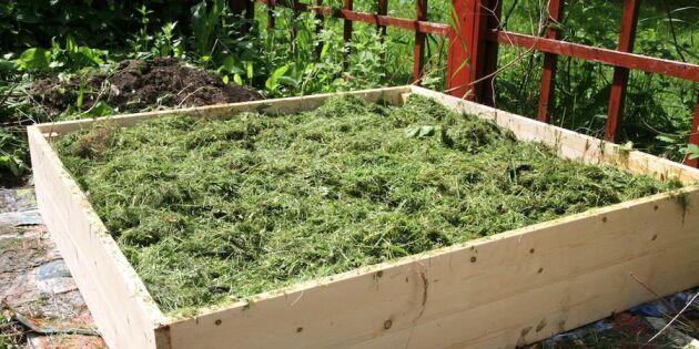 Sluta gräv i grönsakslandet –så lasagneodlar du steg för steg