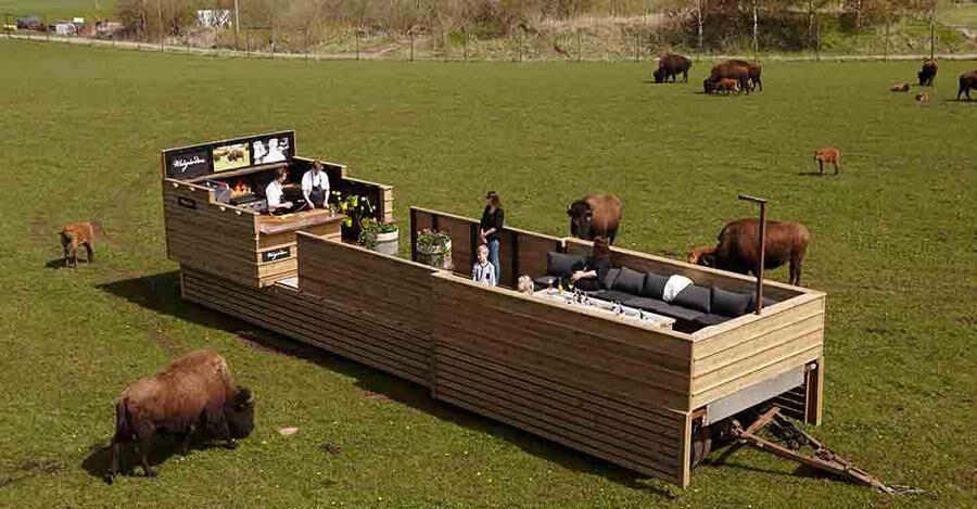 Ät middag bland bisonoxar på Wrågården.
