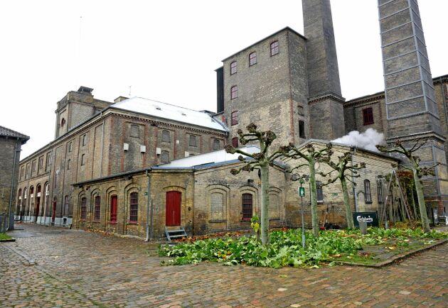 Stallet där hästarna står ingår i Carlsbergs besökscenter som för tillfället renoveras och inte är öppet för besök.