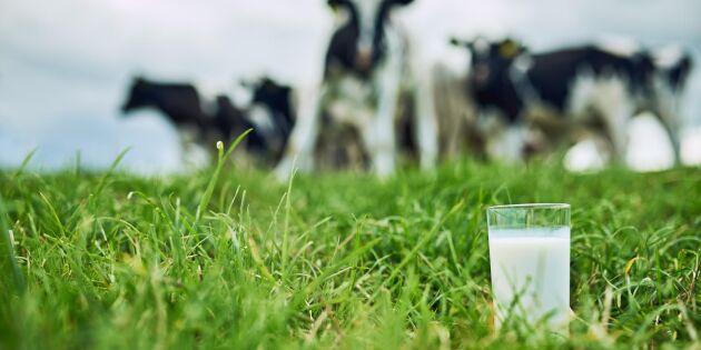 Här är mjölkbönderna som tog guld