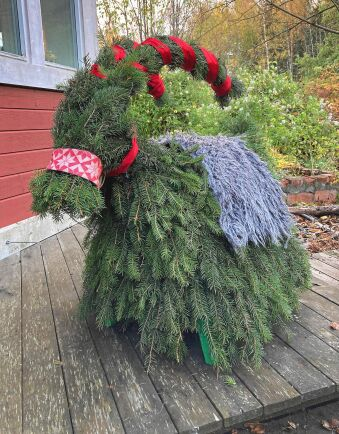 Årets julbock välkomnar med rufsigt raggig granpäls och långa krökta horn.