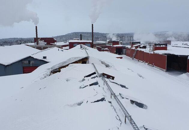 Stora snömängder fick taket på en av Martinsons limträfabriker att rasa in. Lyckligtvis fanns inga människor i fabriken och ingen skadades av raset.