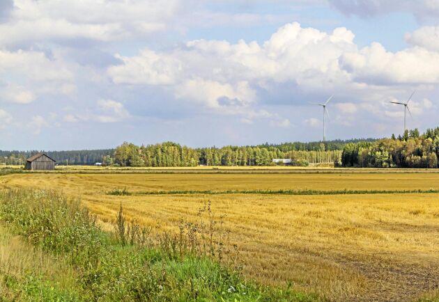 Många bönder i Finland har drabbats hårt av sommarens torka. Arkivbild.