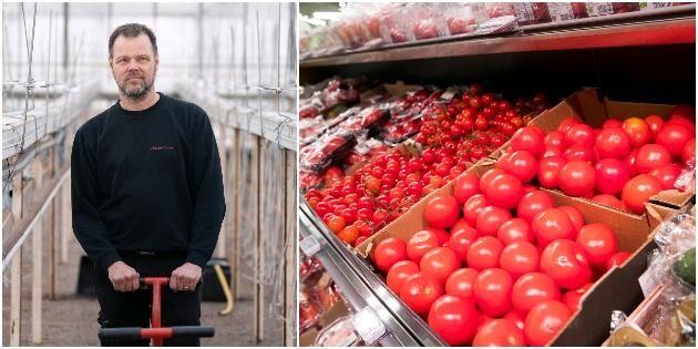"""Odlare rasar –billiga tomater """"skyfflas in"""""""
