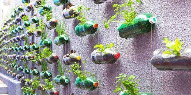 Hängande trädgård av plastflaskor
