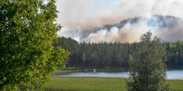 Larmmiss kan ha försenat insats i skogsbrand