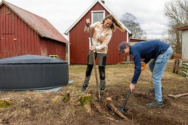 Julia och Tom gräver up rotskott från syrenen som ska bli till en ny häck, som lite skydd då skolan ligger intill byns vägskäl.