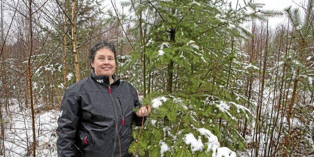 Klimatförändring bäddar för känslig invandrare