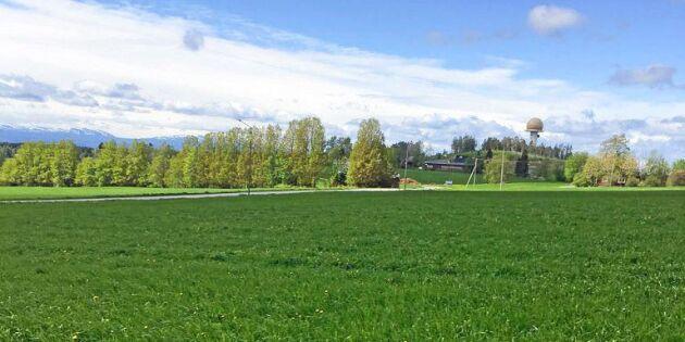 Vårbrukskollen: Bra väder för växtligheten men för lite vatten i magasin