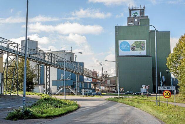 Lantmännens foderfabrik i Holmsund utanför Umeå.