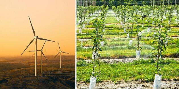 Vill du börja klimatkompensera? Detta bör du tänka på