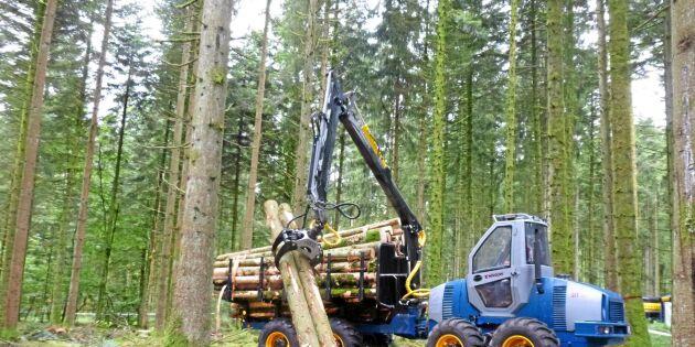 Ny 7-tons skotare avslöjas